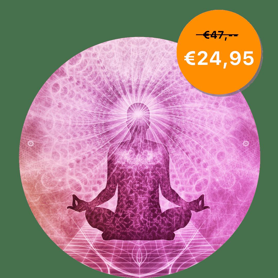 Hypnoseshop24-chakra-preis